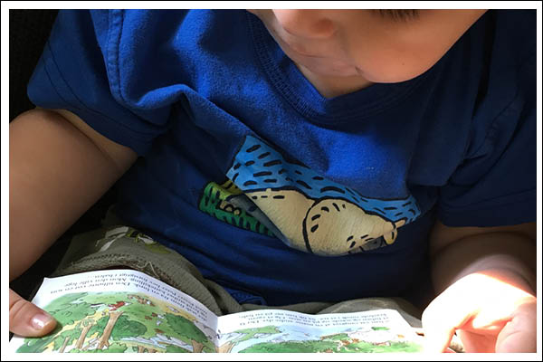 toddler reading curious george goes camping